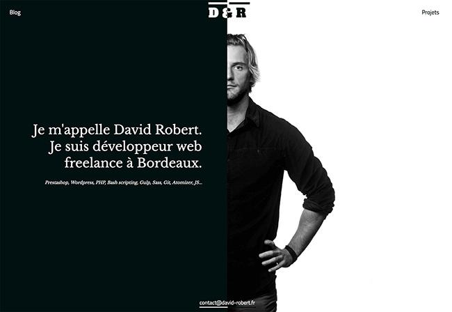 david-robert
