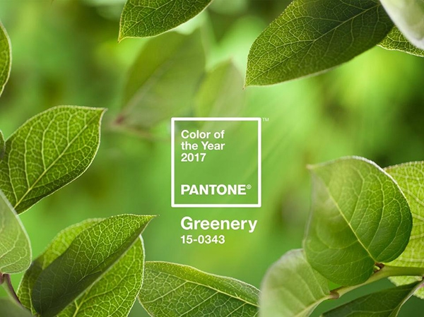 Pantone công bố xu hướng màu sắc 2017