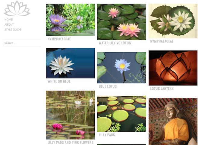 waterlily-theme